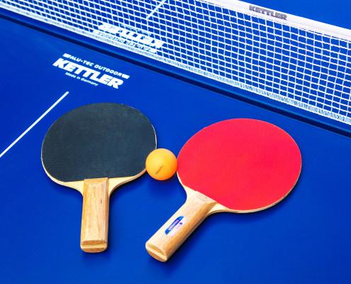 Ping Pong - Tennis Table